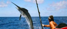 Deep sea fishing in Varadero