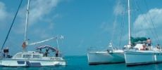 Catamaran and Iguana island excursion from Cayo Largo